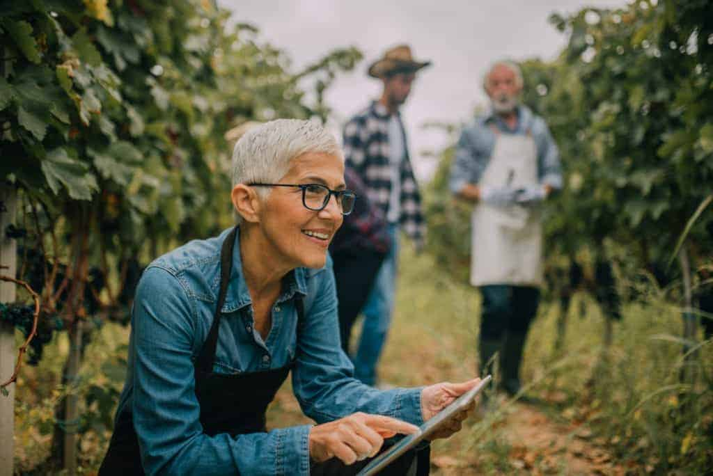 Smiling woman in a vineyard using a tablet for winery marketing